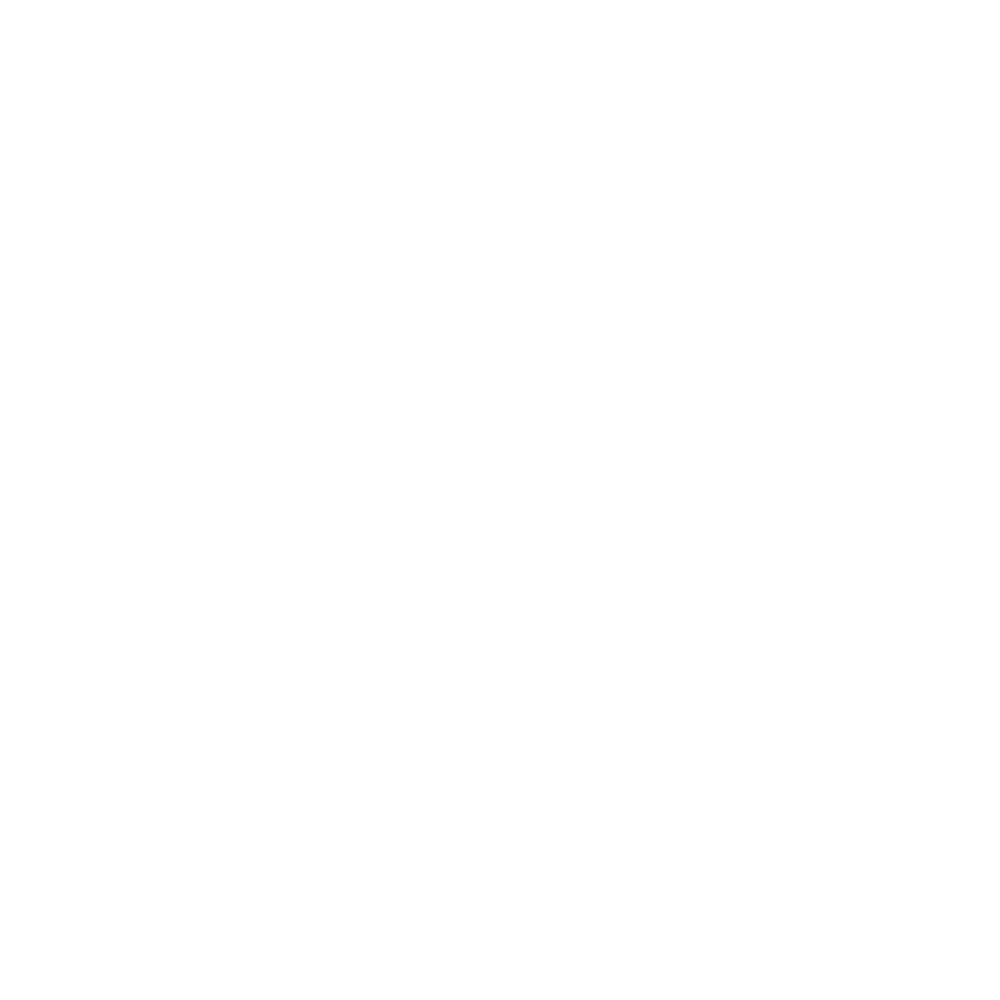 29-IE-white